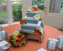 Amanda Sobel & Brahm Driver (mandotts) Tags: blue wedding cake daisies weddingcake gerbera daisy ribbon bridescake