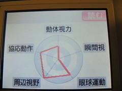 Nitendo DS 眼力トレーニング