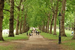 Green Park pathway