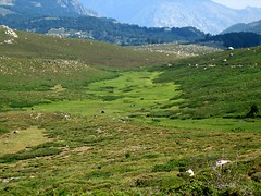 Pozzines du Cuscionu (Coscione) vers les bergeries de Bassetta