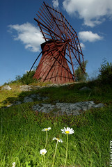 Windmill from 1909, daisies from 2007 (JeromesPOV) Tags: blue red sky white flower green grass yellow clouds suomi finland flora bluesky daisy margarita gras finnish asteraceae uusikaupunki sunnyday 2007 kaunokainen gnseblmchen 1909 whiteyellow windmolen beautifulday 1635 windmhle yellowwhite fillinflash bellisperennis madeliefje fillin molinodeviento moinhodevento 200707 nystad moulinvent highclouds tuulimylly offcameraflash tusenskna mulinoavento nohdr nothdr strobistcom vderkvarn finnishsky canonef1635mmf28l platinumphoto diamondclassphotographer flickrdiamond 20070721 suomisky usedflashcord from1909 margaridavulgar margaritacomn kehsiipimylly