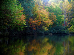 autumn (bdaryle) Tags: autumn fall nature water colors leaves reflections sony brandondaryle bdaryle imagesbybrandon