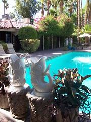 Pool at the Villa Royale