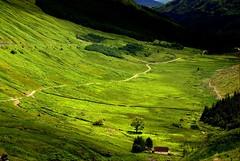 Take the highroad (Nicolas Valentin) Tags: house green scotland bravo scenery coolest challengeyouwinner anawesomeshot restandbethankfull holidaysvancanzeurlaub youvsthebest thegoldenmermaid thepinnaclehof