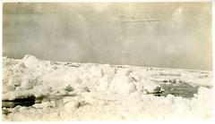 Pack ice, Antarctica (UON Library,University of Newcastle, Australia) Tags: ice antarctica antarctic banzare 19301931 a6590iv arcticantarctic