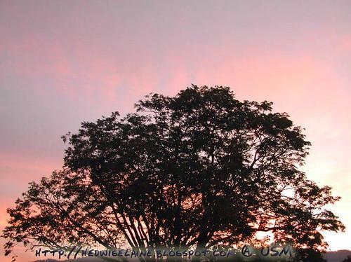 nice evening scene~