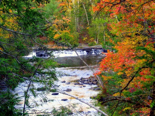 Fall colors at Wilson Stream..a cascade