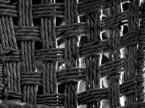 En la unión esta la fuerza - Nando © 2007 -