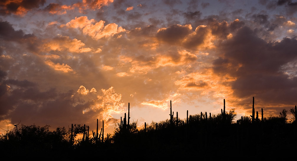 sunset in catalina state park
