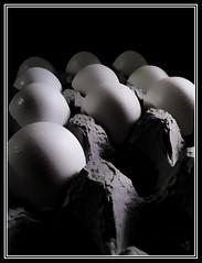 Eggs (Opinionated Design) Tags: shadow blackandwhite bw white black reflection monochrome contrast gray rows missouri sweat eggs carton 2010 trudeauphotography