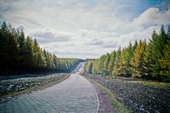 (*D21) Tags: china leica autumn color film 35mm leicamp epsongtx970 kodakpro160c leicasummliuxm3514asph