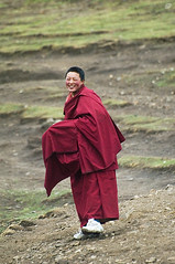 a laughing buddhist nun
