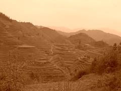 DSCN9515 (followingcha) Tags: guanxi 49avril2007