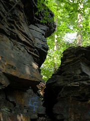 Ledges along Doan Brook in Cleveland