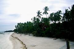 alona beach (jetdamazo) Tags: travel resort bohol panglao