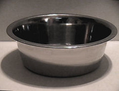 food dog steel bowl stainless