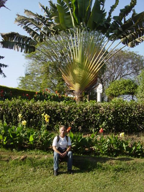 Mumbay Public garden2 by marcopolo19492000