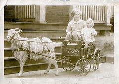 RP - Goat Cart with Two Girls (Lynn (Gracie's mom)) Tags: vintage children postcard goat antiquepostcard boutique apb postcards oldphoto cart oldphotos antiquepostcards realphoto realphotos longhairgoat longhairedgoat apboutique