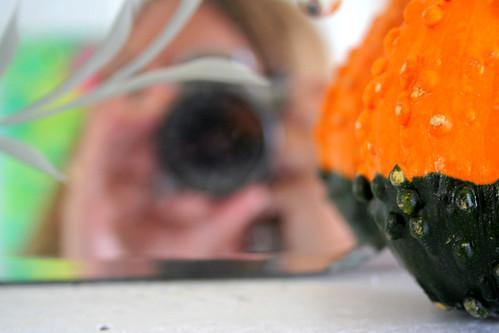 peekaboo gourd