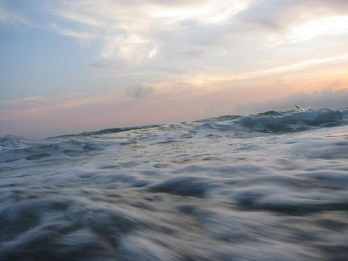 Water - Sarasotta Waves