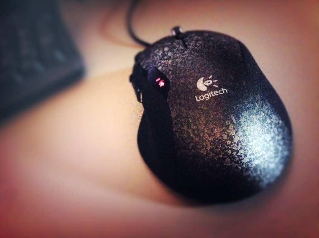 2010.306 - New mouse at work