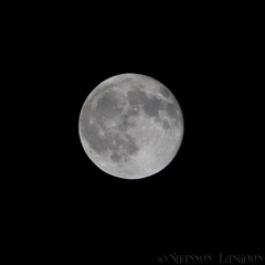 Full Moon (Shay7997) Tags: oklahoma digital canon 350d rebel xt raw skies shannon shay default existence eternal canondigitalrebelxt altus eternalexistence