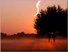 Pink mist (Polimom) Tags: pink trees orange mist sunrise shadows katy golfcourse thumbsup twothumbsup cincoranch challengeyouwinner willowfork pinkforthecure thumbsupwrestling unanimoustu tuw121
