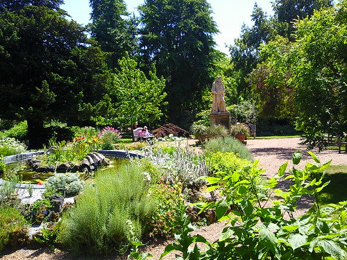 Chelsea Physic Garden:  Healing not seeing into the future
