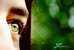 """Olhos de ressaca"" (Francine de Mattos) Tags: brasil canon site nikon florianpolis fotos fotografia fotgrafos notcias cmeras fotografe ideias francinedemattos"