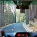 perdersi intenzionalmente, parte I: per arrivare dove si vuole (Yosemite National Park, CA)