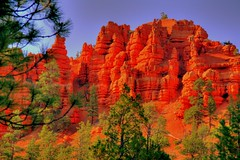 Campsite with a View... (desertdiva) Tags: rock canyon hoodoo bryce brycecanyon formations rockformations brycecanyonnationalpark