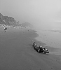 Couple with Dog on South Beach in Mist (Madeline Houston) Tags: ocean blackandwhite bw usa mist beach fog blackwhite washington romance cc olympicnationalpark southbeach cf pgc tcf naturelandscape queets photofaceoffwinner cmwdblackandwhite thechallengegame pfogold maddiemcwa queetswashington