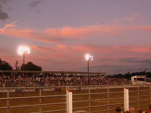 All's Quiet at the Rodeo