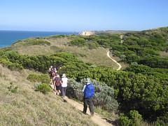 IMG_3046 (kenorrha) Tags: australia greatoceanwalk scenicsnotjustlandscapes