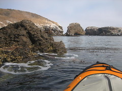 Kayaking the Channel Islands