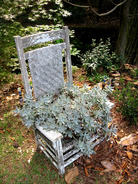 Tom's other Planted Chair