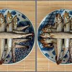 DSCF1916 ししゃも shisyamo (parallel 3D) thumbnail