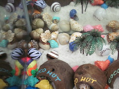 Ft Walton Shop hermit crabs by Infrogmation, on Flickr