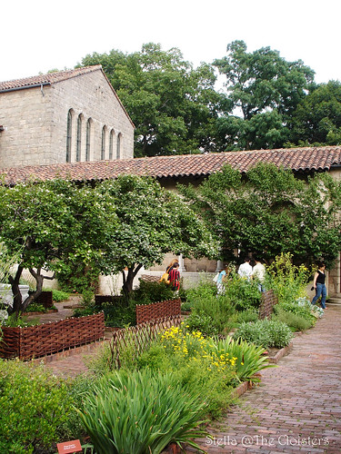 in the Garden of the Cloisters