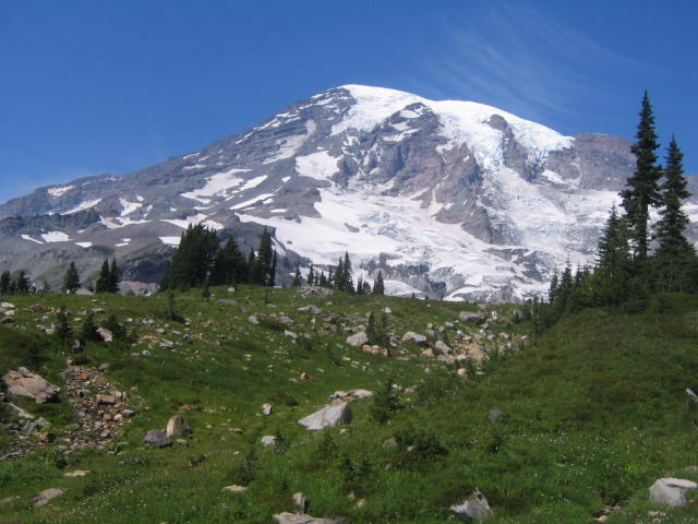 Mt. Rainier From the Skyline Trail