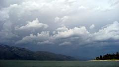 IMG_3089 (mmelkerr) Tags: nature nationalpark yellowstonenationalpark yellowstone wyoming yellowstonepark