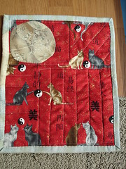The back of a 1 for 1 doll quilt