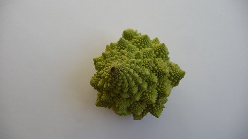 Generative Vegetable I