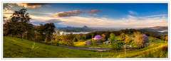 Jacarandas morn pano (dazza17 - DJ) Tags: sunrise landscape hdr sunshinecoast scapes anawesomeshot daryljames dazza17