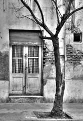 Viejo (Colo Eiguren) Tags: door old city bw house argentina casa puerta edificio ciudad bn rosario viejo