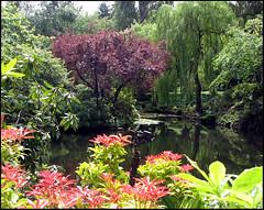 ~Butchart Gardens~ - by joanpopular