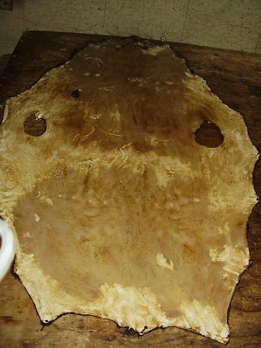 Shishmaref Tannery- Seal skin