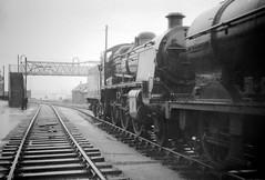 Barry Glamorgan South Wales July 1968 (loose_grip_99) Tags: railroad wales train engine railway steam barry locomotive scrapyard 1968 southernrailway lms britishrailways miland uksteam 31618 woodhams 43924 gassteam