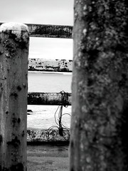 OXIDO MIRAMAR (Erniebm) Tags: bw byn argentina pier muelle rust rusty oxido miramar oxide