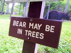 Bear may be in trees?! (rcvernors) Tags: bear usa animal sign geotagged zoo wildlife unitedstatesofamerica wv westvirginia blackbear frenchcreek upshurcounty rcvernors frenchcreekgamefarm westvirginiastatewildlifecenter